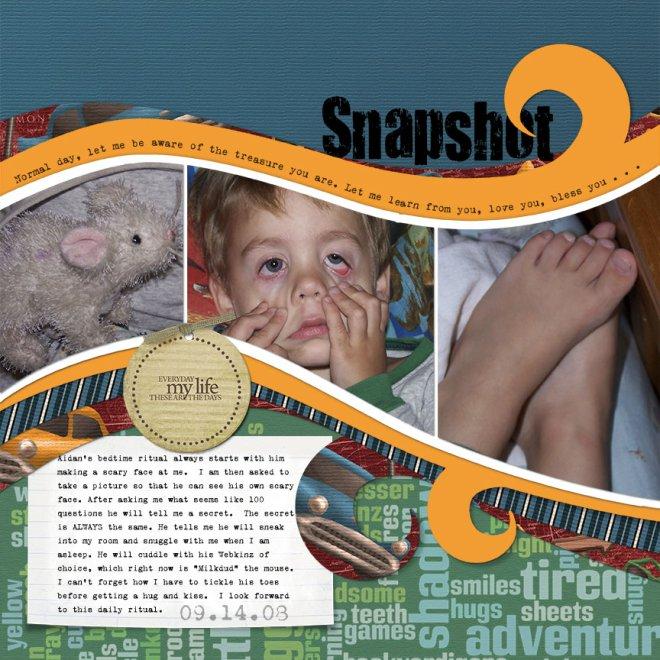 snapshot-web-size