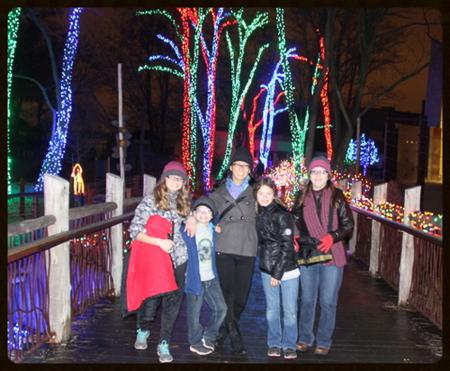Lights at Zoo 7