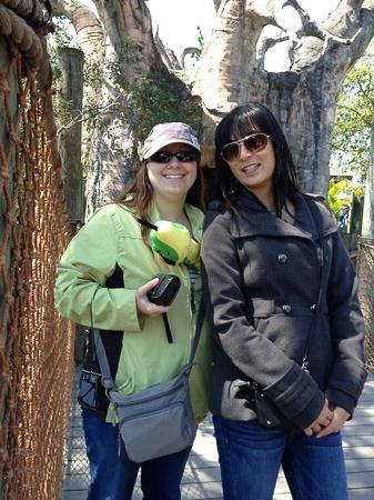 brevard zoo 4