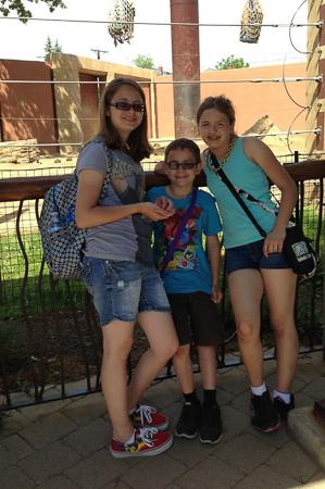 zoo adventure 11