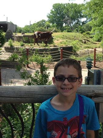 zoo adventure 12