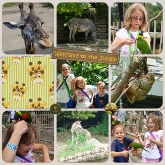 Cincinnati Zoo 2009 RIGHT