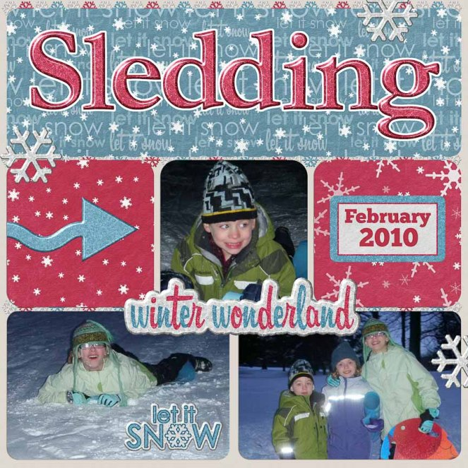 Sledding FEB 2010